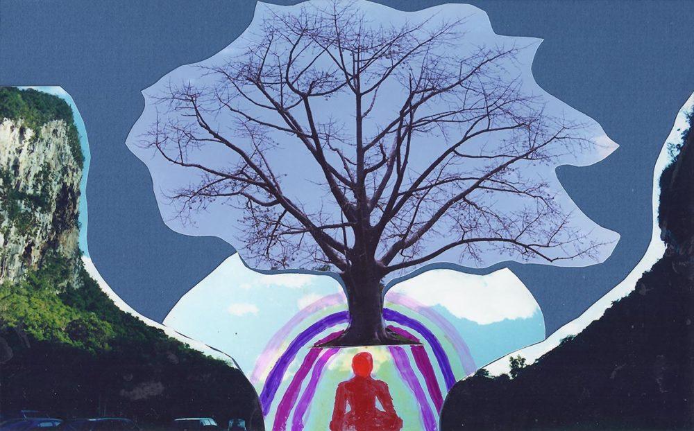 GRATITUDE – Conciencia | Consciousness